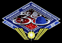 International Space Station Expedition 38 Embroidered Patch